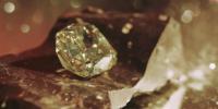 Diamond Brown